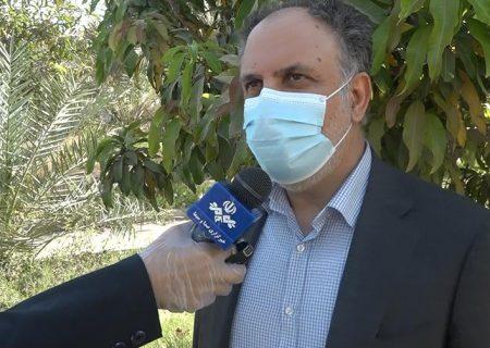 توزیع ۳ هزار و ۶۰۰ تن کود اوره تا پایان سال/ کشاورزان نگران تامین کودهای شیمیایی نباشند