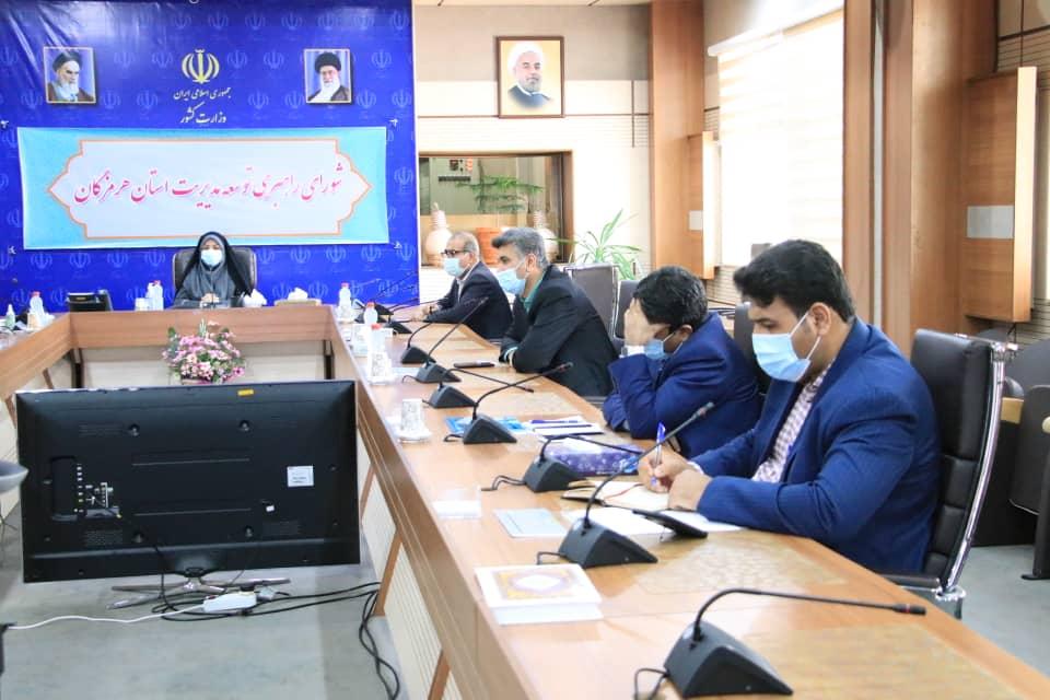 معرفی خدمات سامانه همیار در شورای برنامه ریزی استان توسط مدیرعامل سازمان