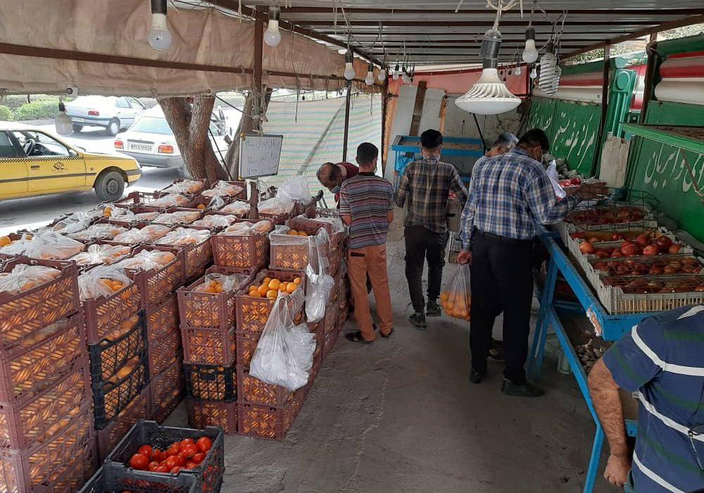 توزیع ۱۰۰تن میوه تنظیم بازار توسط تعاون روستایی هرمزگان